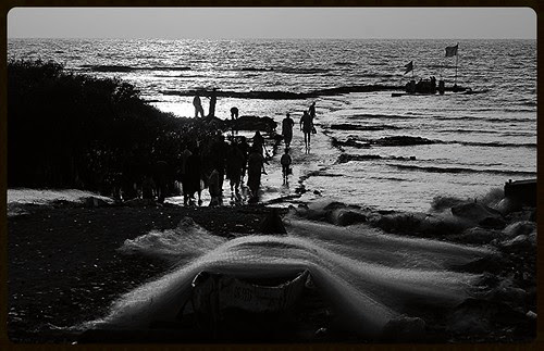 Fishing Nets Carter Road by firoze shakir photographerno1