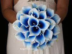 Blue Halo Calla Lilies   Calla Lily Wedding   Pinterest