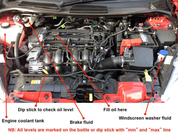 Ford Focus Under Bonnet Diagram