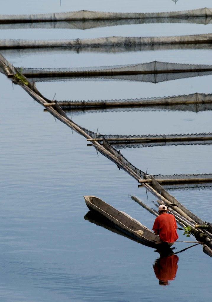 lake sebu morning fishing