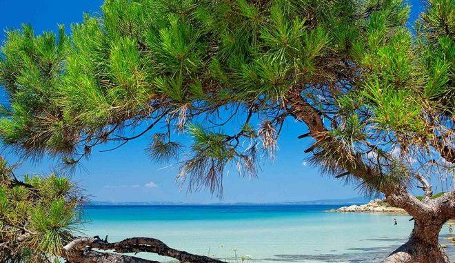 Σαν τη Χαλκιδική δεν έχει - αλλά ποια είναι η καλύτερη παραλία;