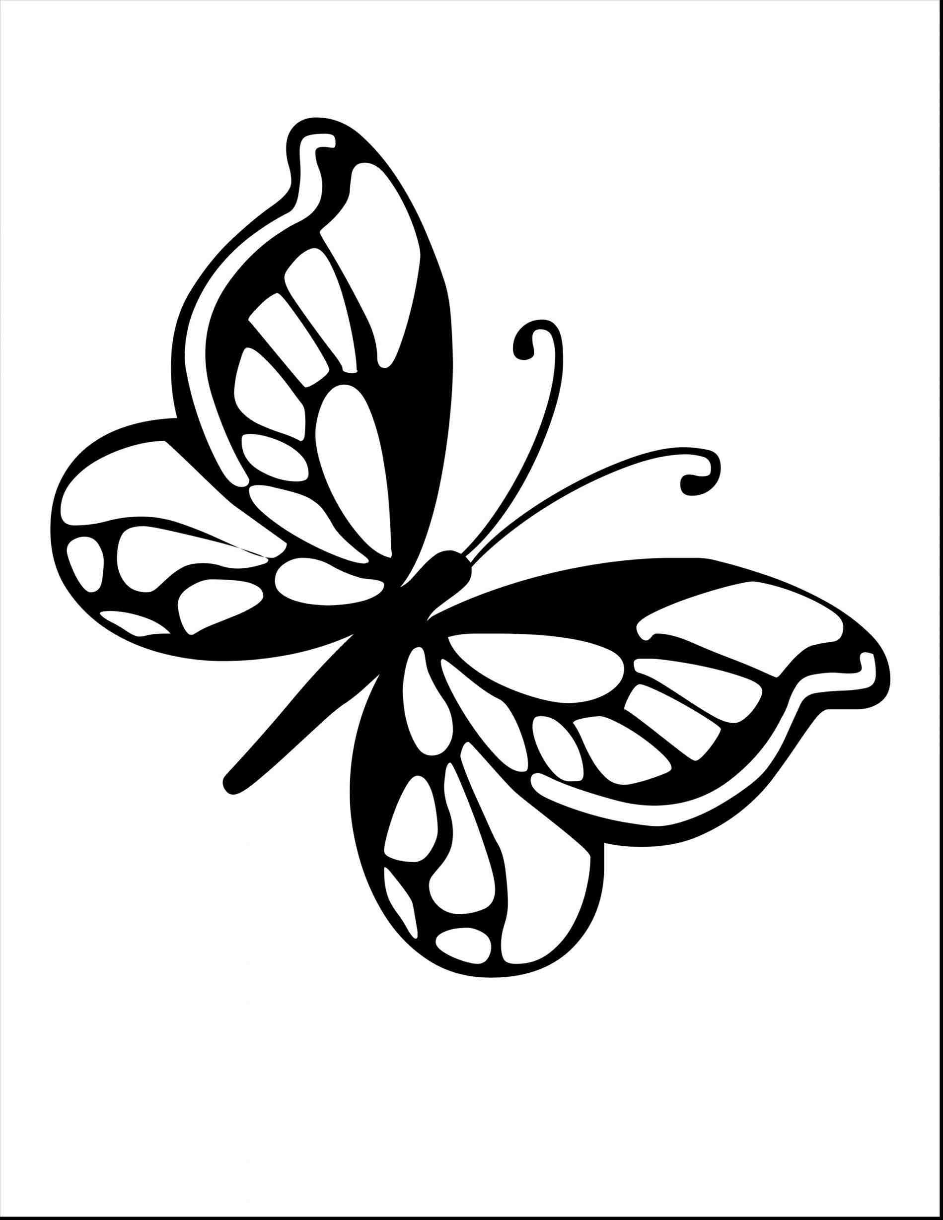 Wings Line Drawing | Free download on ClipArtMag