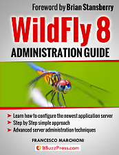 http://www.itbuzzpress.com/ebooks/wildfly-8-book.html