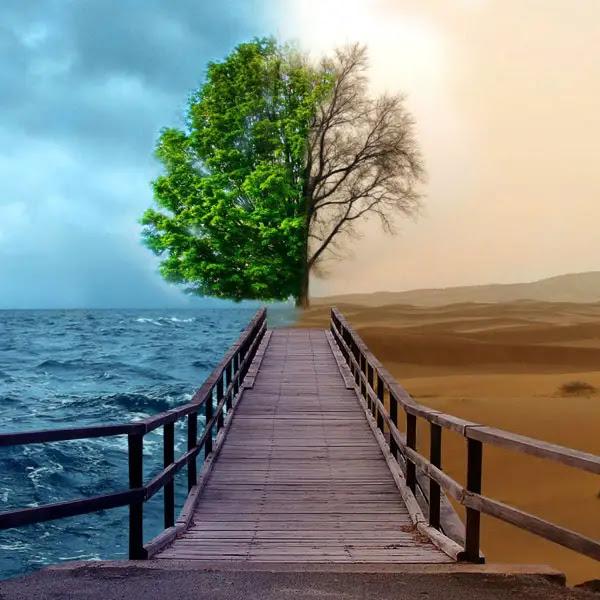 Bipolar Nature iPad Wallpaper