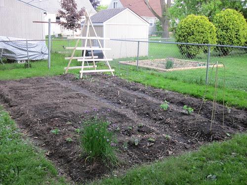 Garden 2010: Day 1