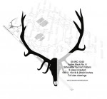 Antler Rack No.6 Yard Art Woodworking Pattern - fee plans from WoodworkersWorkshop® Online Store - antlers,animals,hunting,hunters,yard art,painting wood crafts,scrollsawing patterns,drawings,plywood,plywoodworking plans,woodworkers projects,workshop blueprints