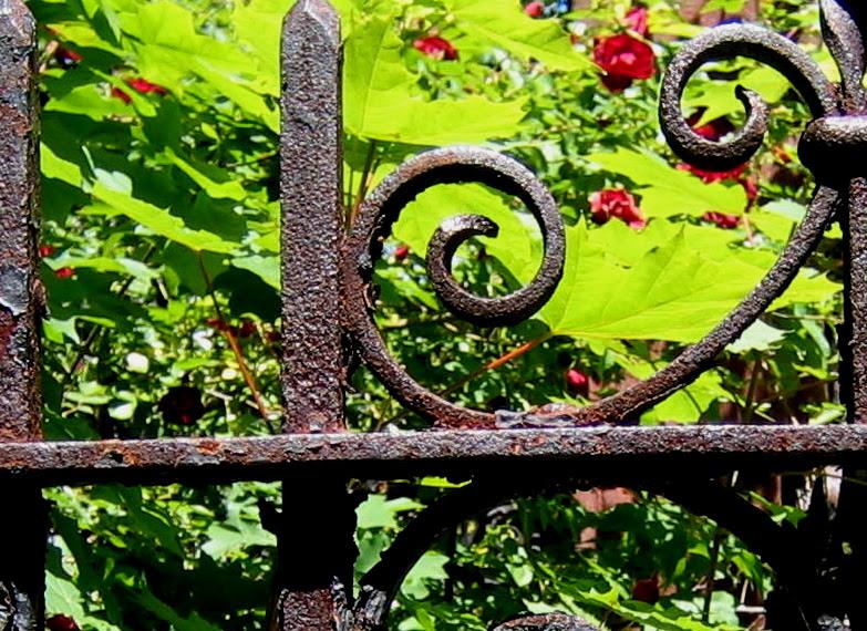 gate, park slope