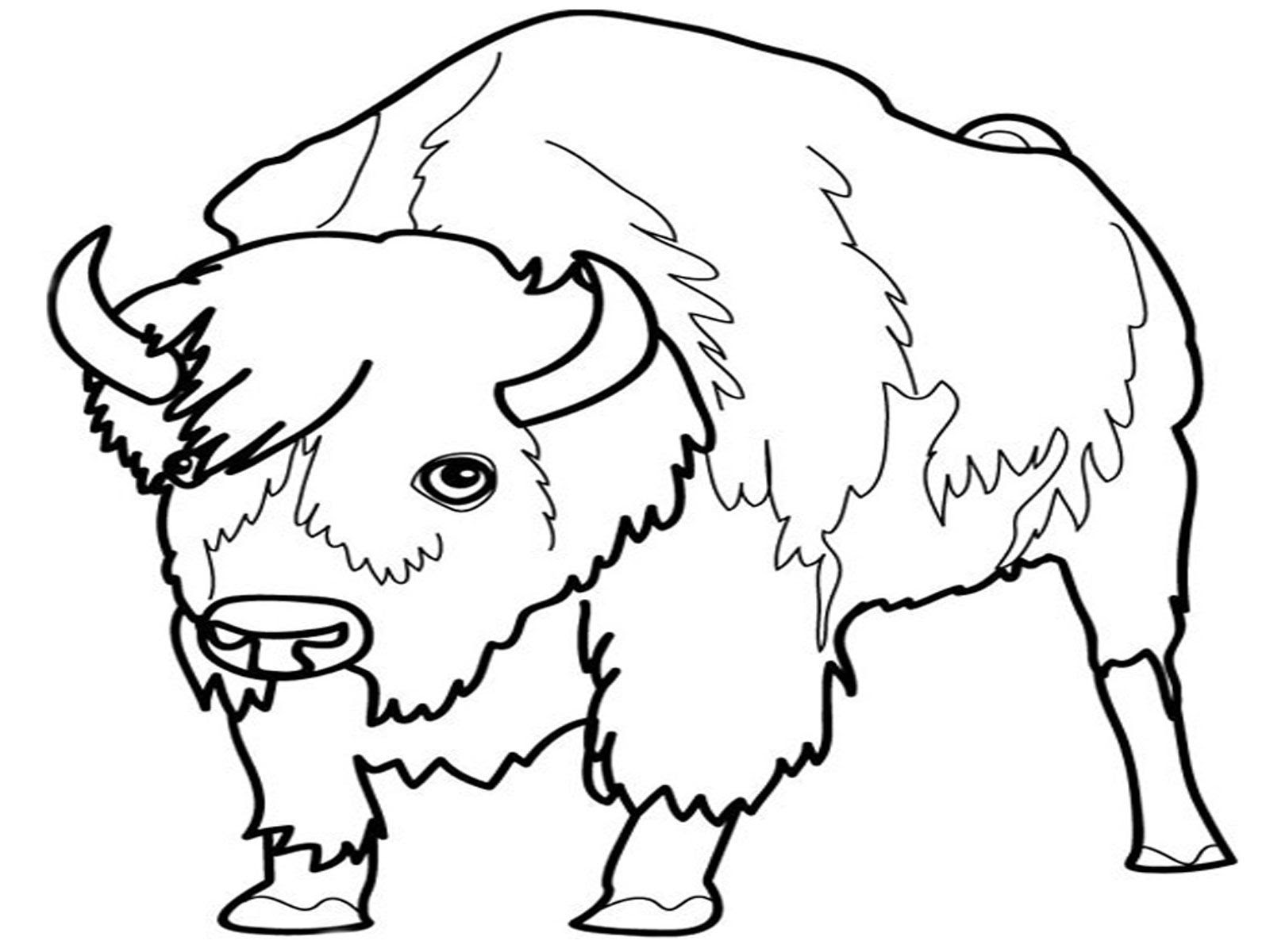 88 Europe Animals Coloring Pages , Free HD Download