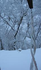 snow2 Feb 08