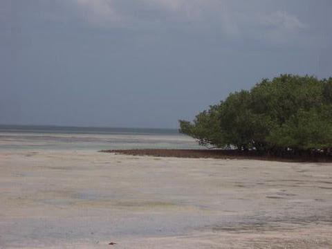 MURRUBUE - praia a sessenta minutos de Pemba.jpg