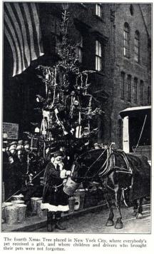 Humane Society New York Christmas Tree