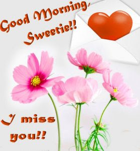 Lovegd mrng images Wallpaper for Whatsaap Download With Flower