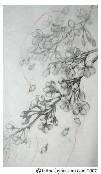 Cherry Blossom Tree Tattoo Designs Cherry Cherries