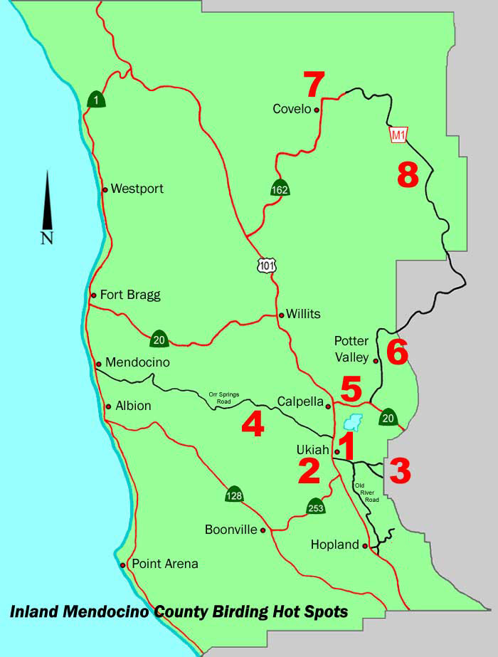 Pas Places To Bird In Inland Mendocino County