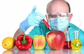 mitos-OGMs