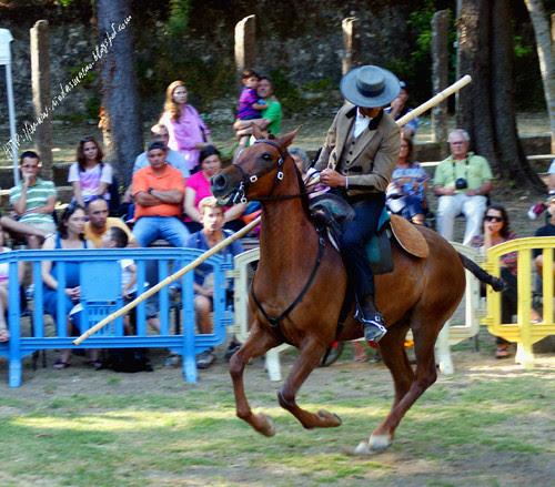 Festival equestreRibafria23072016cblog.jpg