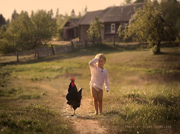 ภาพถ่ายเด็กเดินกับไก่