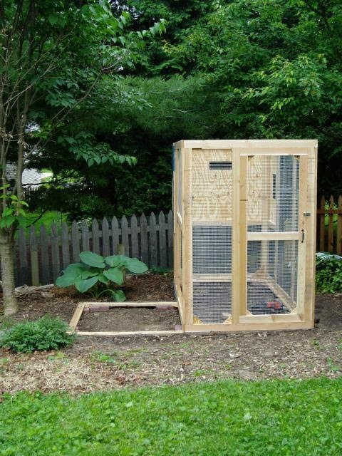 City Chicken Coops for Small Backyards