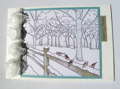 Many Thanks 5 Robins in Winter
