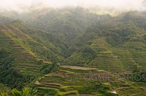 Banaue Front Site Viewpoint I