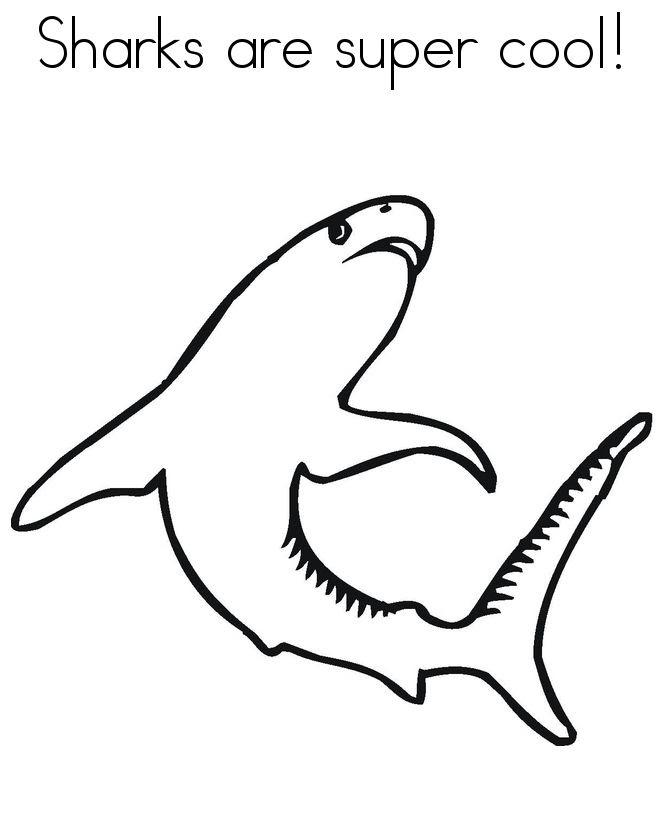Shark Line Drawing at GetDrawings   Free download