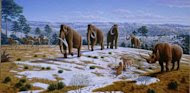 Woolly mammoths wandered the planet for about 250,000 years and vanished from Siberia by about 10,000 years ago.