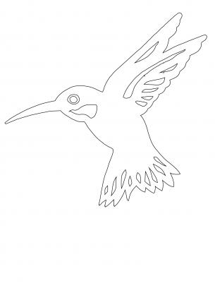 Hummingbird Blog - Hummingbird Pictures |Hummingbird Nest Coloring Page