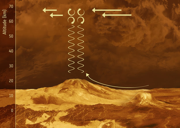 Gravity waves on Venus