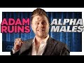 Alpha Males Do Not Exist - Video