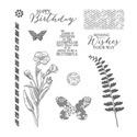 Butterfly Basics Photopolymer Stamp Set by Stampin' Up!