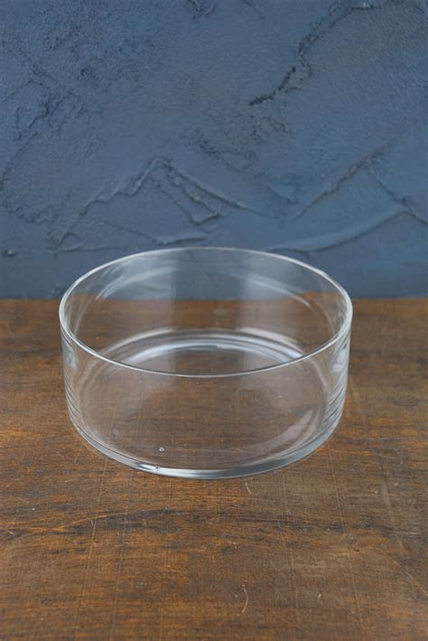 Clear Glass Round Terrarium Dish 8""