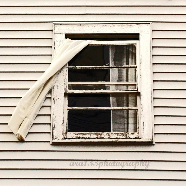 "25% OFF SALE White Rustic Photography - 20x20 inch Fine Art Maine Photograph - ""Fly Through the Window"" - ara133photography"