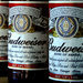 Anheuser-Busch InBev, the maker of Budweiser, is trying to buy control of Grupo Modelo for $20.1 billion.