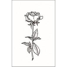Роза    2,6 см х 6,0 см.
