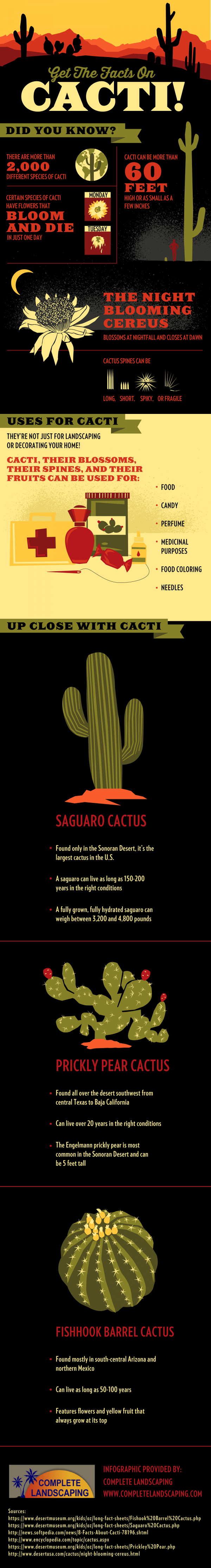 Get the Facts on Cacti!