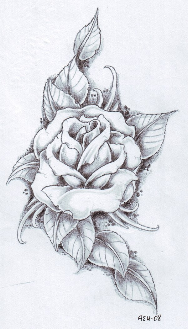 15 Rose Design Black And White Images White Roses Tattoo Design