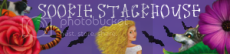 Sookie Stackhouse by Charlaine Harris