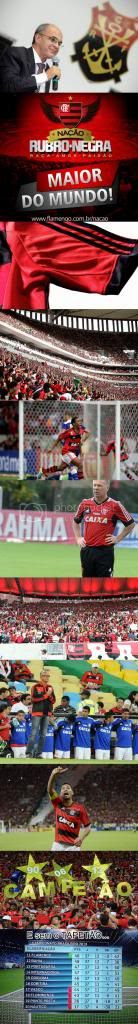 Retrospectiva 2013 do Flamengo em Imagens!