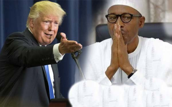 Image result for Buhari and Donald Trump