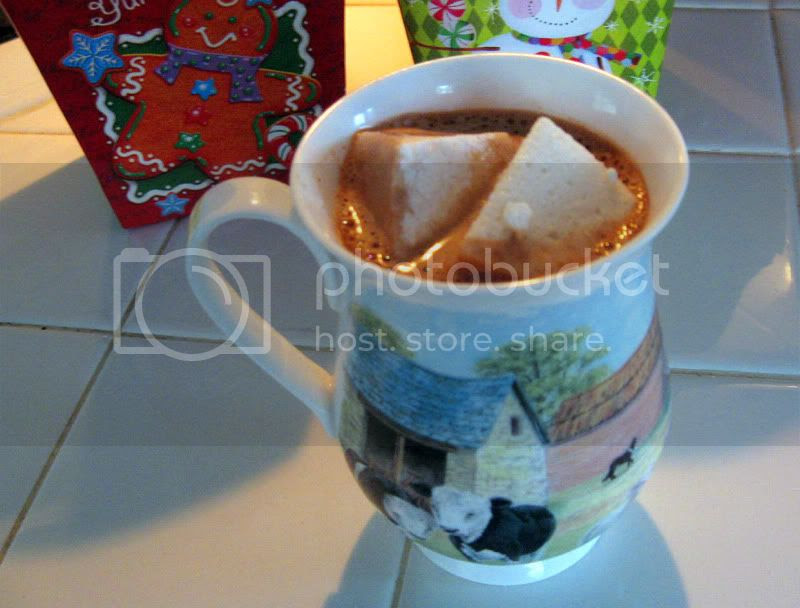 Homemade Hot Cocoa with Homemade Marshmallows by freshfromthe.com