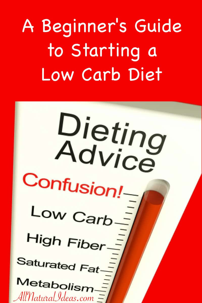 Low Carb Diet Beginners Guide to Starting | All Natural Ideas