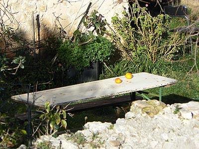 table et oranges.jpg