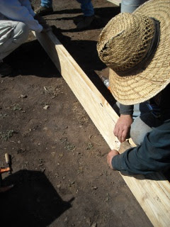 Placing Plywood in Foundation Built-up Beam