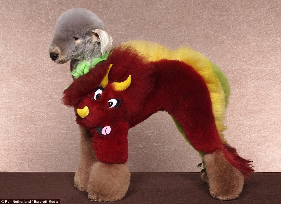 Wacky: It may not look quite as intimidating as a T-Rex but this poodle still makes a decent jurassic dinosaur