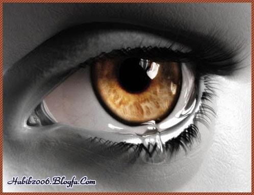 http://pari1385.persiangig.com/image/habib2006.b.jpg