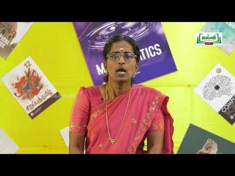 யாமறிந்த மொழிகளிலே Std 11 தமிழ் சீறாப்புராணம் Kalvi TV