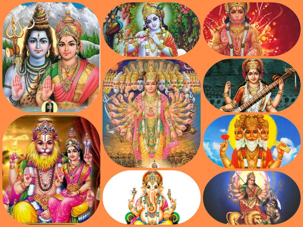 Why Hindus worship many God