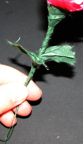 Flower 1 014