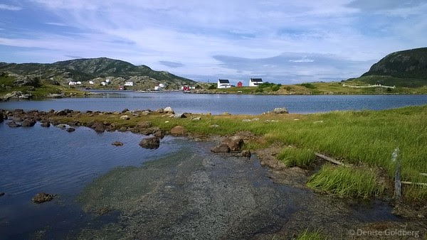 looking across an inlet at the tip of the Eastport Peninsula, in Salvage, Newfoundland