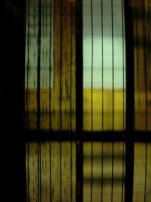 Campos de trigo en el ascensor